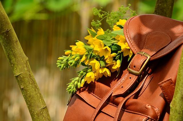 backpack-1482612_640